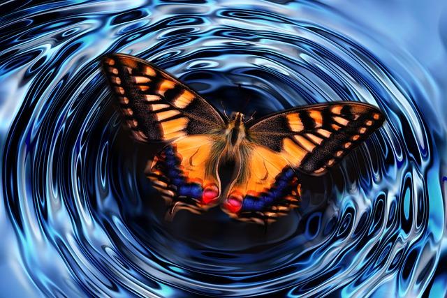 butterfly-4847628_640